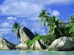 На Сейшельских островах вводят НДС
