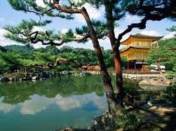 В Японии налог на продажи все таки увеличат