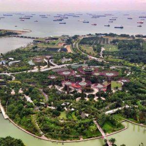 Новый Международный центр налоговых исследований в Сингапуре