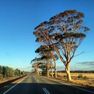 Австралия принимает реформы в топливно-энергетической отрасли