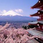 Японии необходимы налоговые реформы, считает МВФ