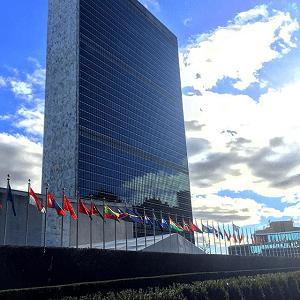 Всемирная организация