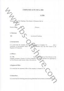 Протокол первого собрания директоров компании, стр. 1 (Minutes of the First Meeting ofthe Board of Directors)