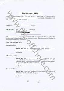 Протокол первого собрания директоров (1 стр)