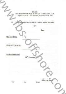 Учредительный договор и устав компании стр.1