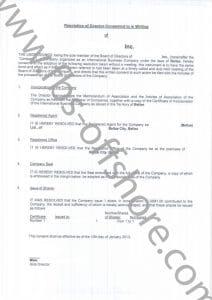 Протокол первого собрания директоров