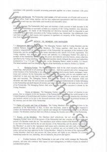 Соглашение о партнерстве стр.5