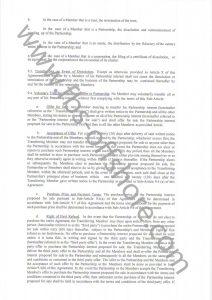Соглашение о партнерстве стр.8