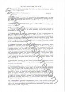 Соглашение о партнерстве стр.2