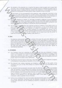 Устав компании стр.13