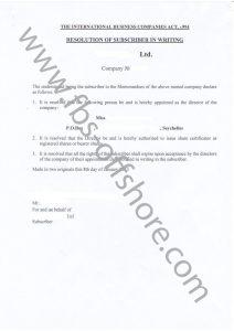 Протокол о назначении директора