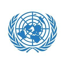 ООН включит новую статью об автоматической цифровой услуге в Типовою налоговою конвенции ООН