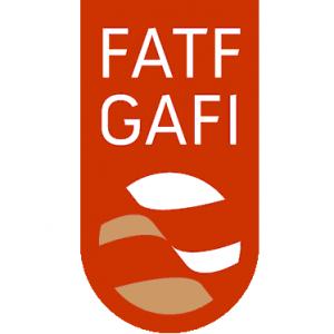 Известны итоги очередного заседания FATF